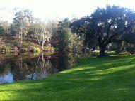 Pretty view2_Middleton