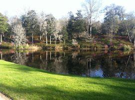 Pretty view_Middleton