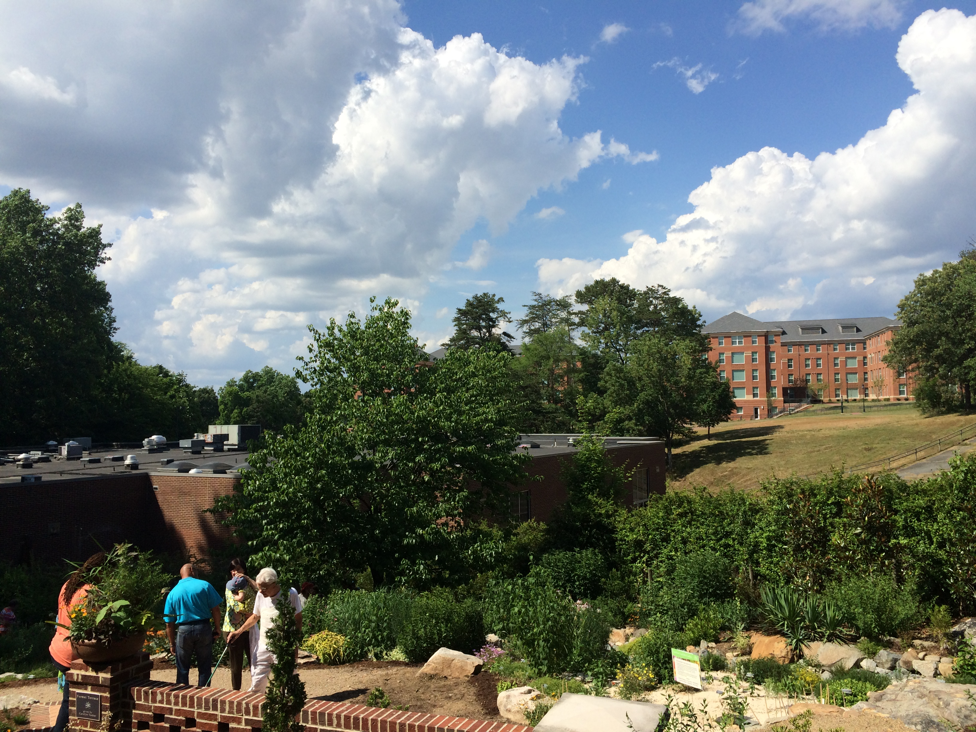 VF Photos From Opening Day (May 31, 2015) Of The Mellichamp Native Terrace,  A New Part Of UNC Charlotteu0027s Botanical Gardens That Displays Native Plants  In A ...